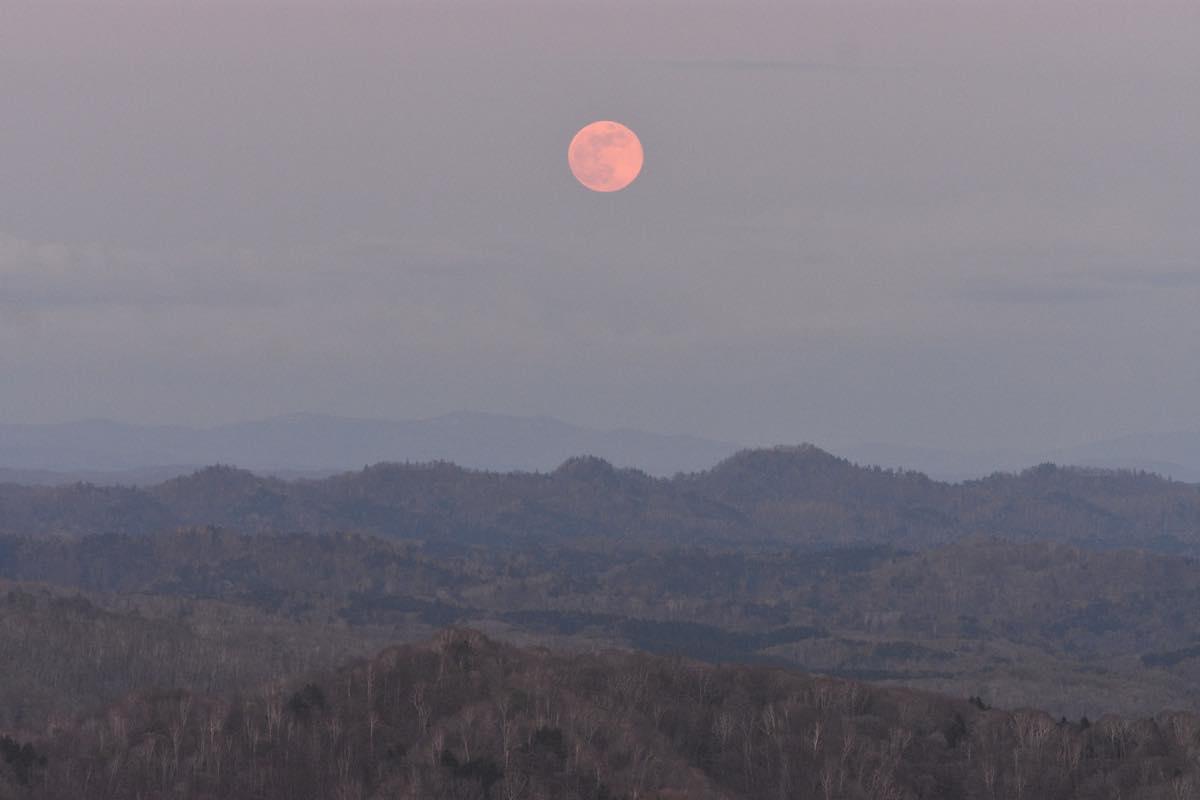 5月の満月、フラワームーン。留萌市ルルモッペ憩いの森